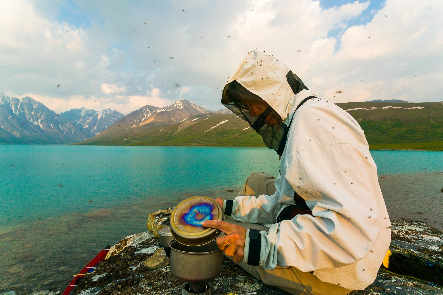 Work Outside Alaska Mosquitoes | Michael DeYoung