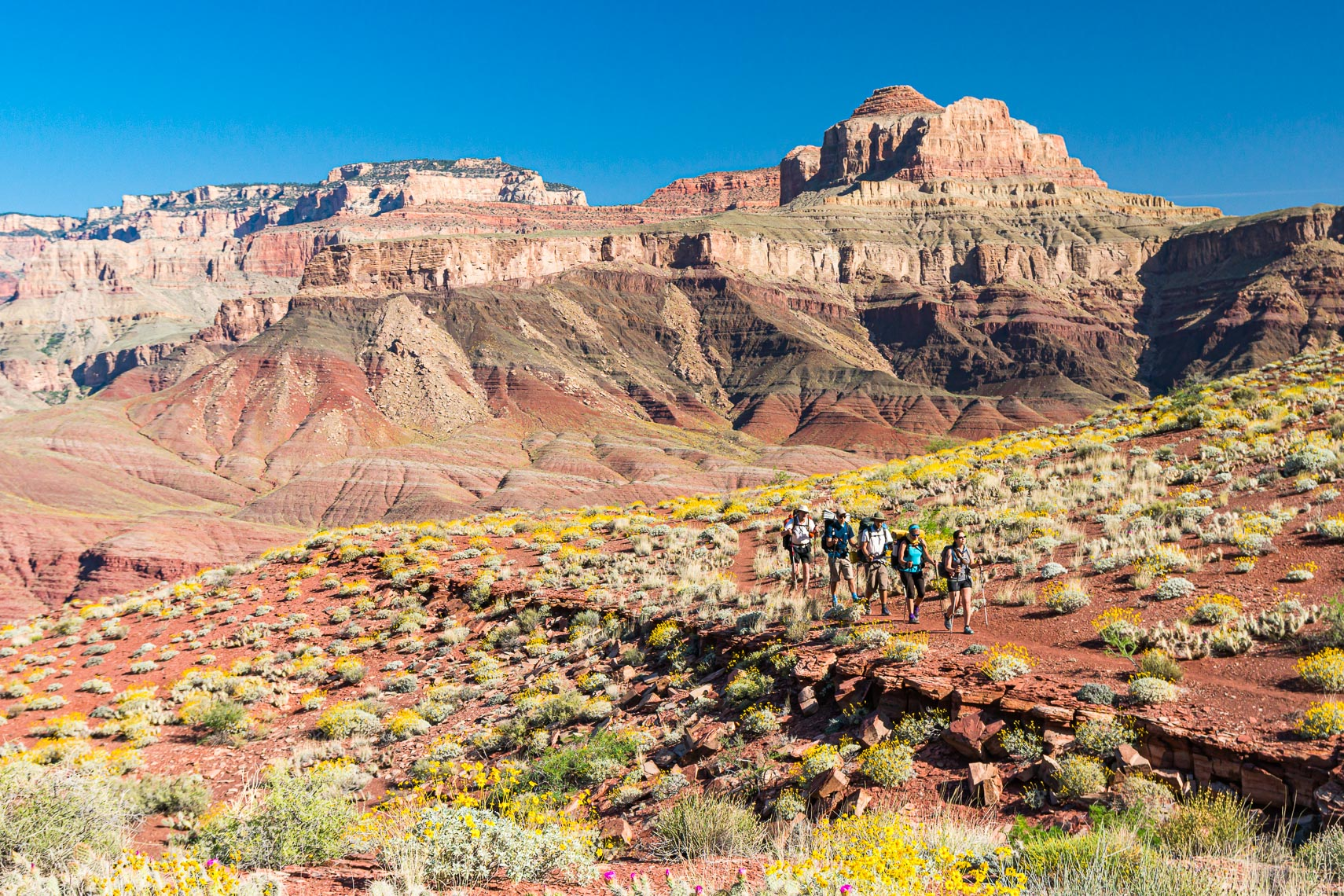 Hikers On Grand Canyon Backcountry Trail | Michael DeYoung