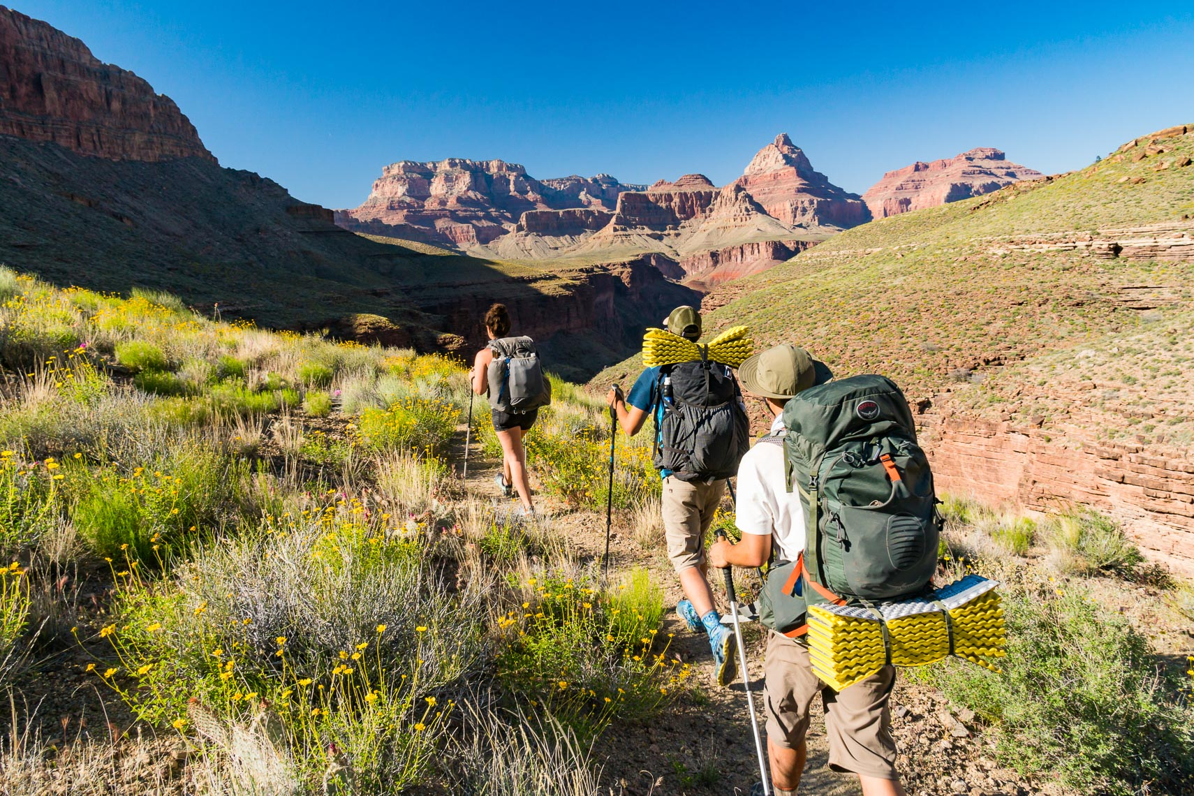 Grand Canyon Backpackers Off Corridor Trail | Michael DeYoung