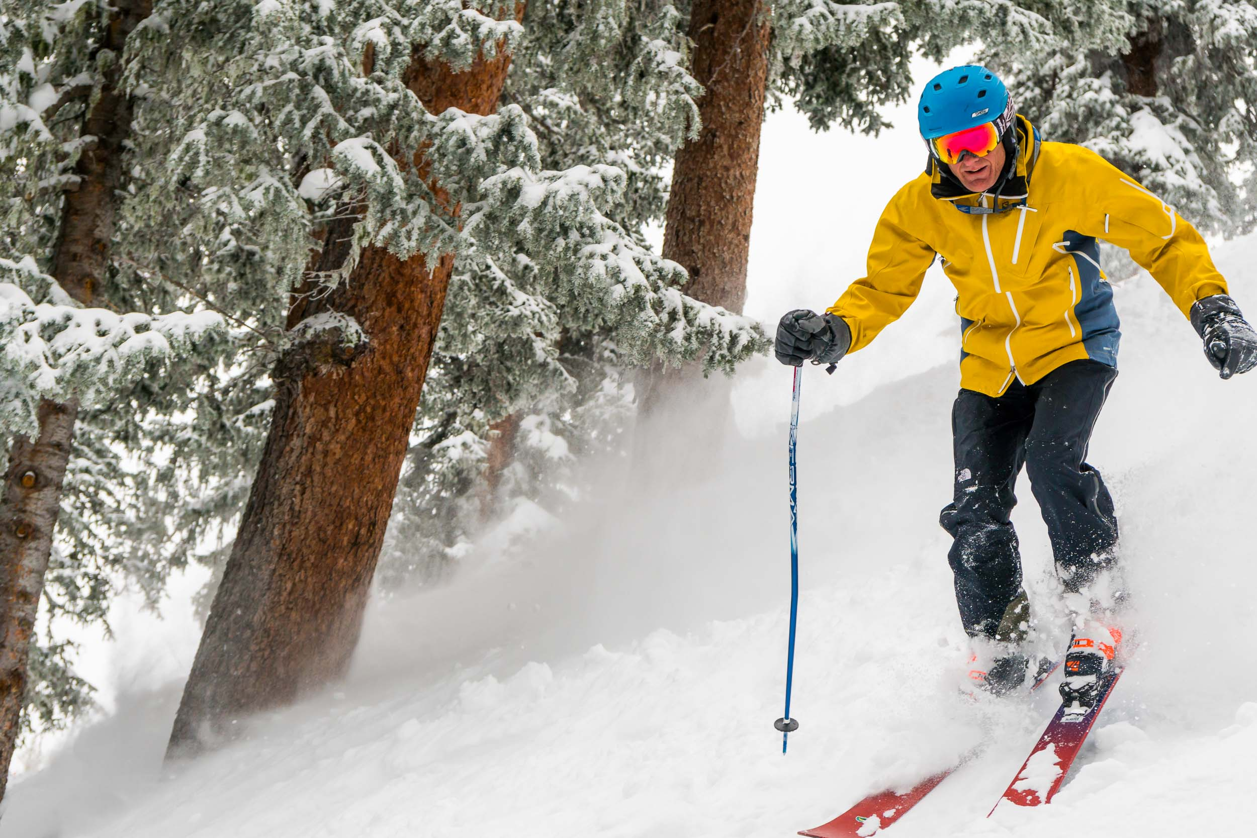 Taos New Mexico Photographers Michael DeYoung Tree Skiing