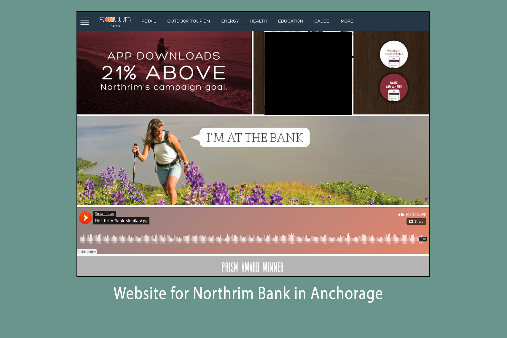 Northrim-Bank-Web-Use