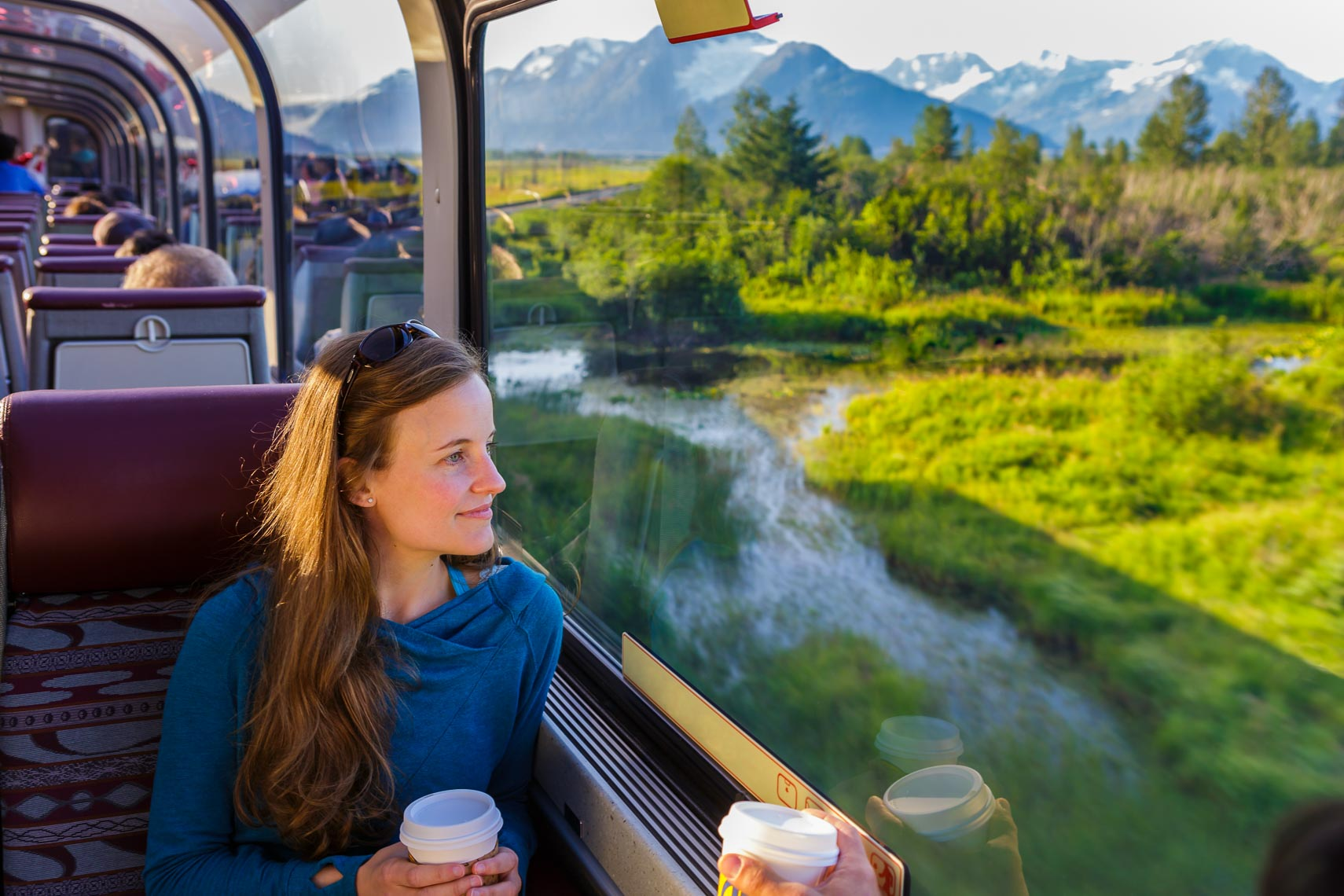 Alaska Railroad Travel View From Train | Michael DeYoung